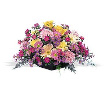 Sp Flowers