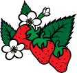 strawberriesi